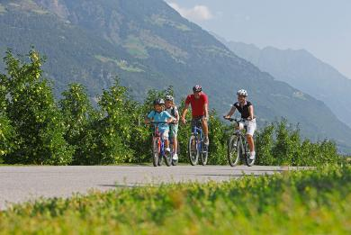 Cycling trails South Tyrol